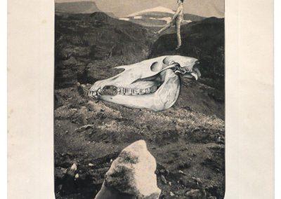 """Aber Hanfstaengl,…"", 1951"