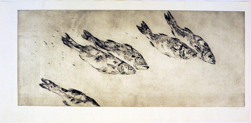 Fische, 2013